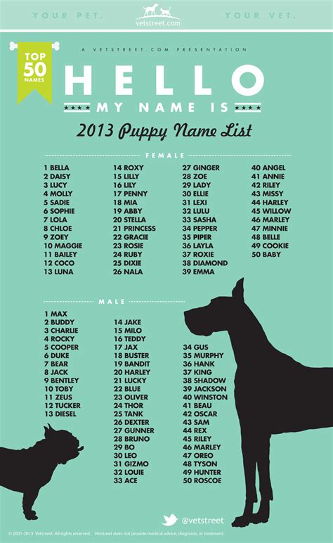 list of puppy names most popular puppy names 2013