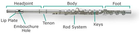 flute diagram labeled flute diagram anatomy of an instrument flute