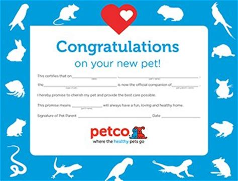how much are classes at petco petco icon certificate