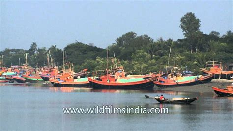 boat r gulf harbour fishing boats at frazerganj harbour on bay of bengal youtube