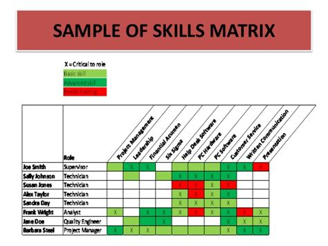 Training Needs Analysis Skills Auditing And Training Roi Presentatio Skills Assessment Matrix Template