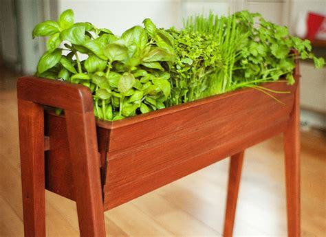 create your indoor herb garden today