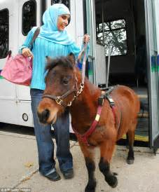 Old Dog Going Blind Blind Woman Buys Guide Horse As Strict Muslim Parents
