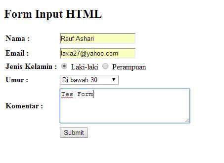 membuat form input html cara membuat form input sederhana menggunakan php gudang