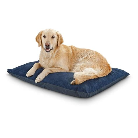 guide gear pillow top gusset dog bed 657471 kennels ortho memory foam pet bed 282875 kennels beds at
