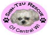 shih tzu rescue wisconsin shih tzu rescue of central wi