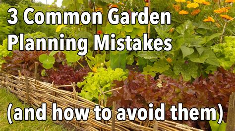 3 Common Garden Planning Mistakes (and how to avoid them
