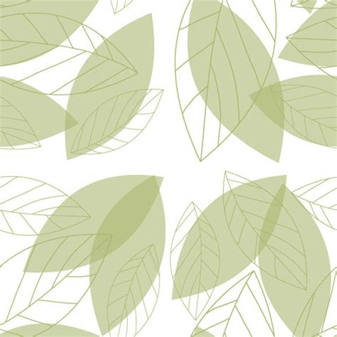 simple pattern leaves simple green leaves nature chic shelf paper 400