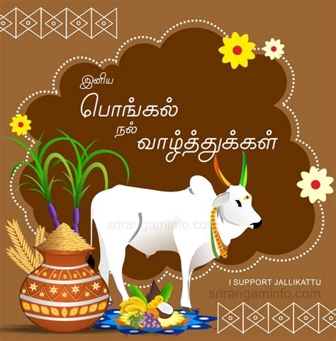 groundhog day jeopardy quotes pongal tamil new year 28 images thai pongal harvest