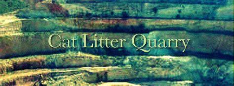 how do you litter a how do you make cat litter environmentally friendly