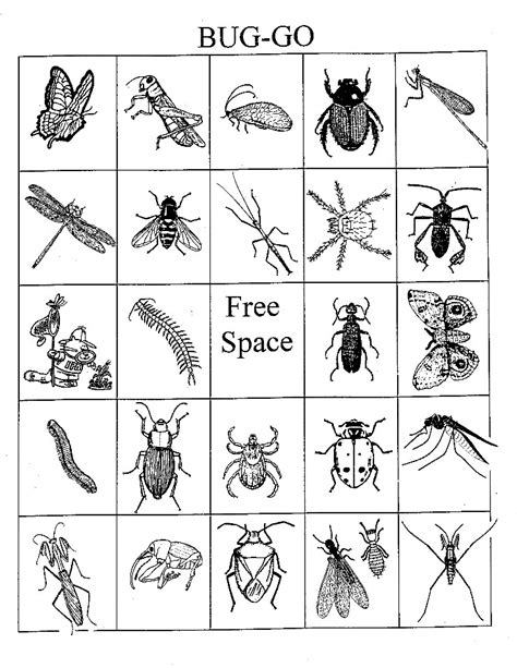 printable pictures insects 12 best photos of printable insect cards bug bingo