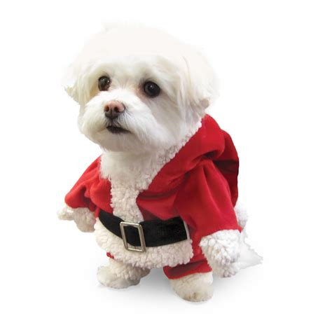 santa puppy pcs pet cat santa hat collar with bell beds and costumes