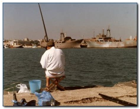 pesca al cefalo nei porti tecniche di pesca al cefalo pescare il muggine dalla costa