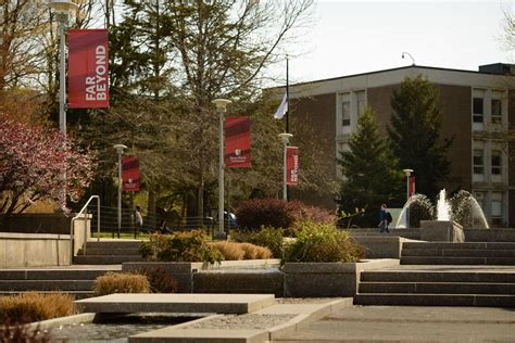 Mba Stony Brook Ranking by Stony Brook Ranked In Top 1 Percent Among Universities