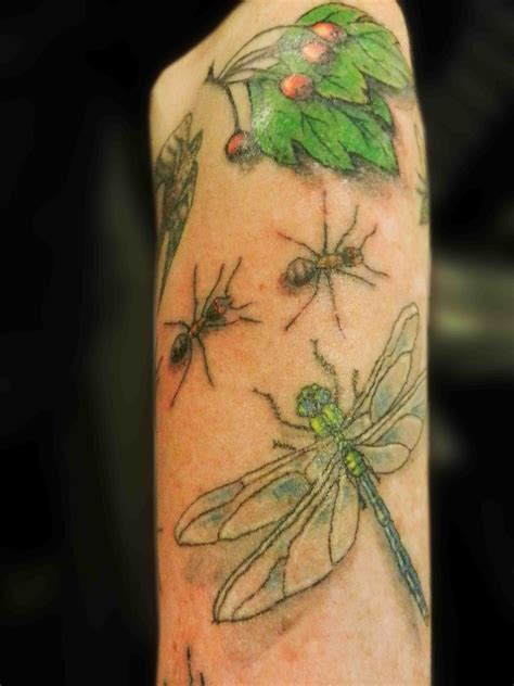 insect tattoo designs a sleeve of insects secret ink