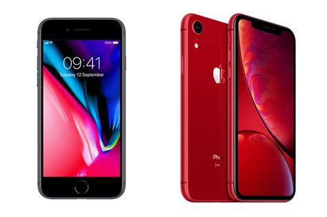 iphone 8 vs iphone xr iphone xr vs iphone 8 should you buy the cheaper phone whistleout