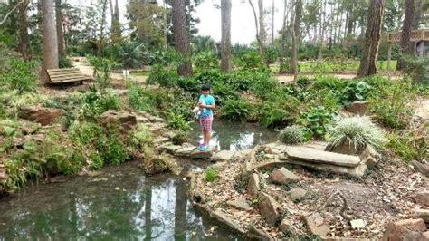 Mercer Arboretum Botanic Gardens Picture Of Mercer Mercer Botanic Gardens
