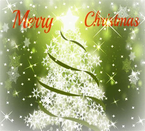 heres  sparkling christmas tree  christmas tree light day ecards
