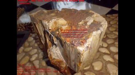 Fosil Kayu Purba batu fosil kayu galih kelor bongkah besar