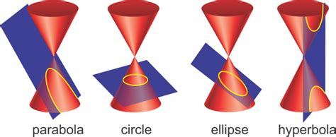 conic sections are four shapes parabolas circles
