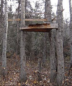 wood tree stand plans easy  follow   build  diy