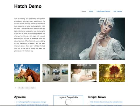 drupal themes hatch 15 free drupal themes for a great website ewebdesign