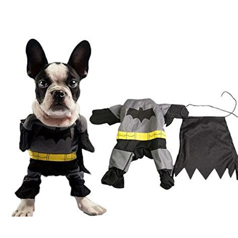 batman puppy superman costume for your seasonal guide