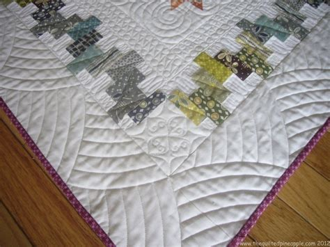 Quilt Borders Patterns by Border Design Idea Quilt As Desired
