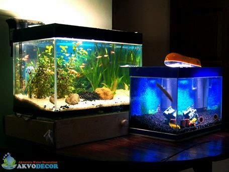Pagar Taman Hiasan Kebun Isi 5pcs info harga toko bangunan keindahan aquascape untuk