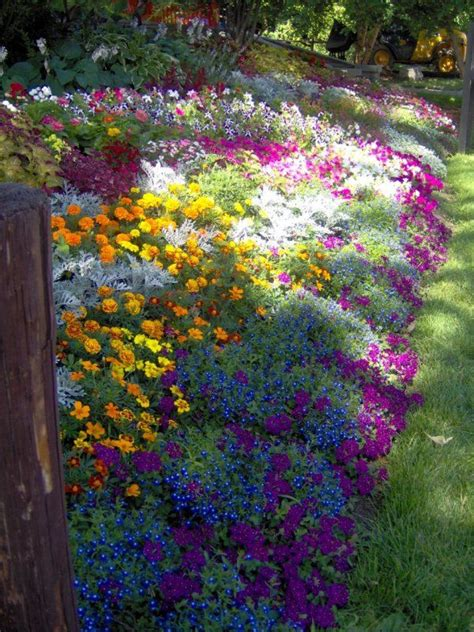 garden flower bed 25 best ideas about flower beds on front