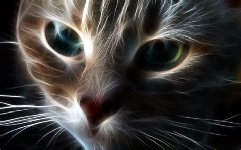 imagenes para fondo de pantalla gatos gatos 3d 1440x900 fondos de pantalla y wallpapers