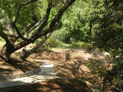 Stairway Picture Of University Of California Riverside Riverside Botanic Gardens