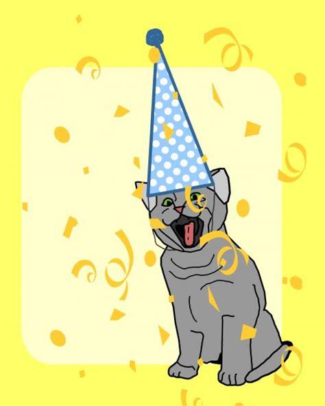 celebration cat  stock photo public domain pictures