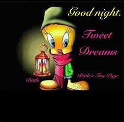 The Goodnight Goodnight Tweety Bird Pictures Photos And Images For