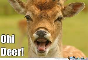 Oh Deer Meme - angry deer memes best collection of funny angry deer pictures