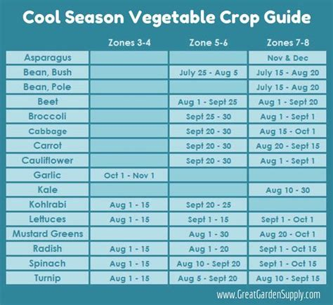 zone 7 gardening calendar a handy guide for planting crops in the late summer