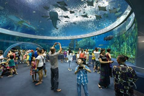 universal studios singapore named asia s 1 amusement park congratulations to chimelong ocean kingdom for thea award