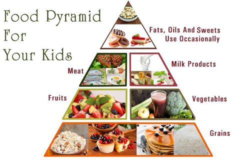 healthy fats for vegan toddlers food pyramid for and your guide to nutrition