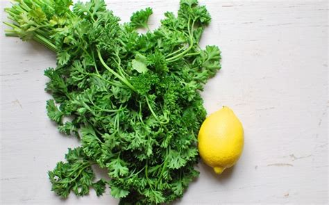 Parsley Detox Side Effects by List Of 17 Best Diuretic Food Sources To Consume