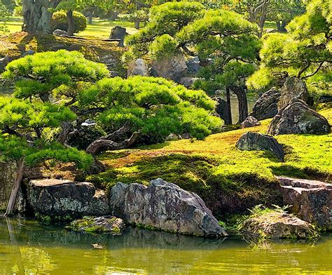 Moss Garden Kyoto by Moss Garden Kyoto Japan Gardens Japanese Gardens