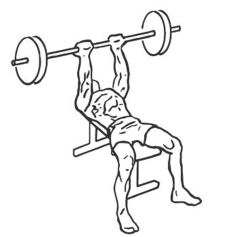 reverse triceps bench press reverse triceps bench press uitleg techniek en uitvoering