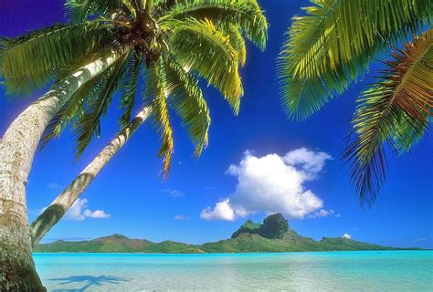 screen background hawaiian backgrounds image wallpaper cave