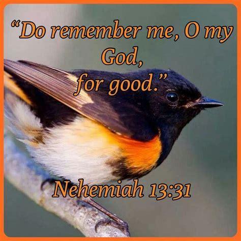 nehemiah  books  ezranehemiah esdrasnehemias pinterest