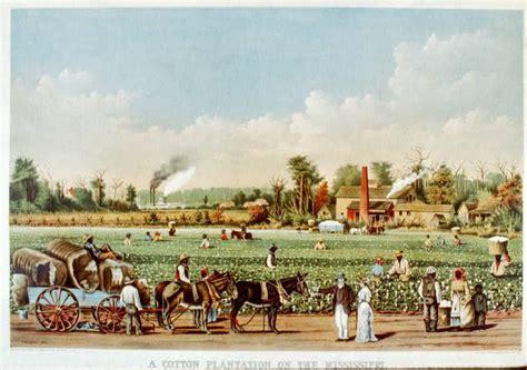 13 tezcuco plantation image by greg english history 276 the old south syllabus