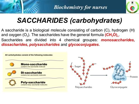 carbohydrates oligosaccharides saccharides carbohydrates