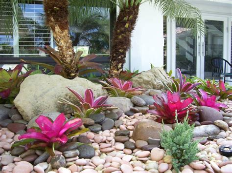 Tropical Backyard Landscaping Ideas Gardening South Florida Style Bromeliads In The Garden