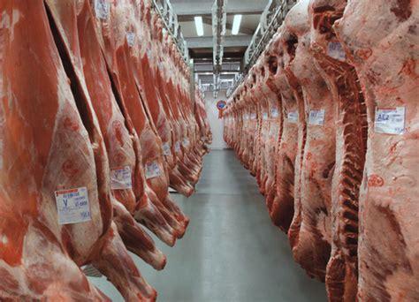 aziende di ladari cronaca ragusa tentato di carne in un azienda
