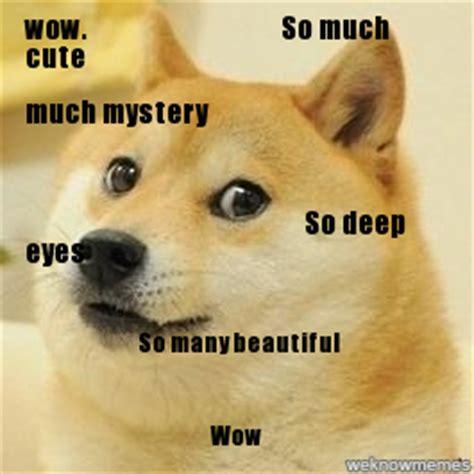 Such Dog Meme