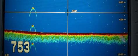 soñar con un barco y agua una imagen del sonar de un barco muestra lo que podr 237 a ser