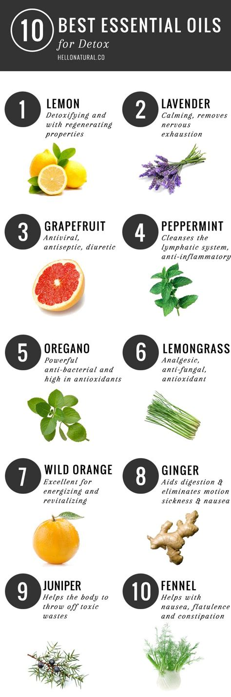 Essential Oils For Detox Brain by 736 Best Images About Infographics On Your